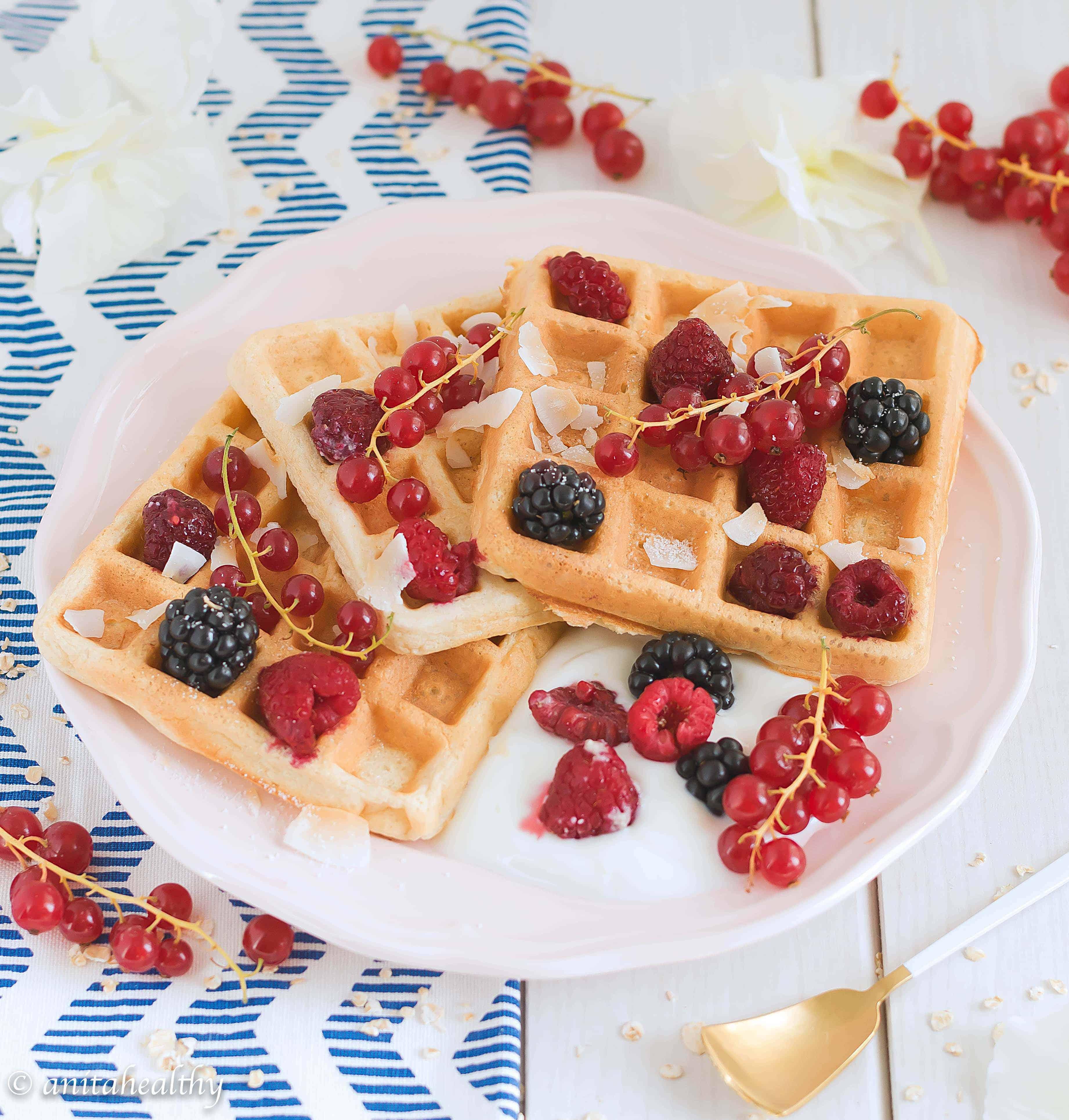 Waffles de aveia | Anita Healthy